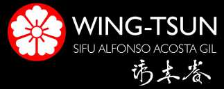 Wing Tsun Cartagena